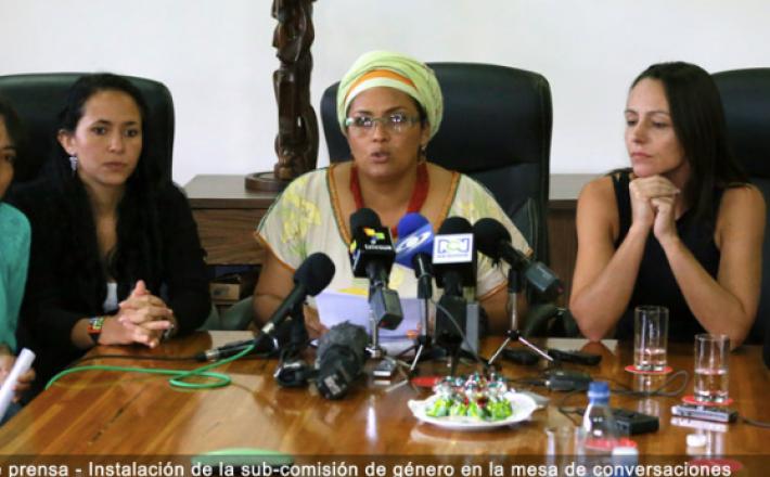 Sub-comisión de genero-Colombia