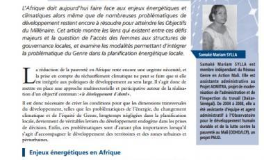 Le rôle du Genre dans la gouvernance locale des enjeux énergétiques et environnementaux en Afrique